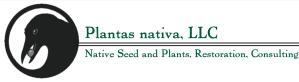 Plantas Nativa